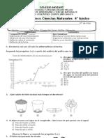 prueba de sintesis, 1 º 2013, ciencias 4