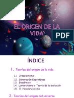 origendelavida-100204133438-phpapp01