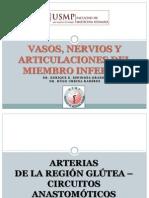 Vn, Miembro Inf y Articulaciones