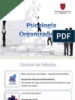 Area Organizacional