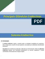 Módulo 14 - Coordenação hormonal_principais glândulas endócrinas e seus hormônios