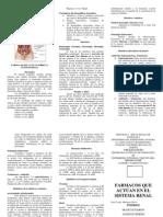 El Sistema Renal.docx Triptico