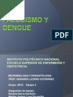 Dengue Paludismo
