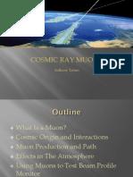 CosmicRayMuons