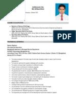 Professional CV