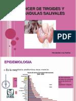 Cancer de Glandula Tiroides y Glandulas Salivales