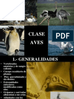 Clase Aves Ppt (1)