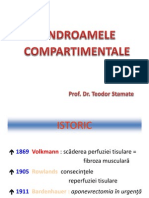 Sindromul compartimental