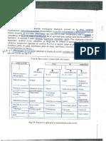 Curs 8 AAI - Modele Strategice de La ADL...Incolo