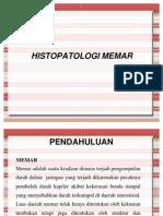 histopatologi_memar
