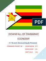 Zimbabwe Downfall