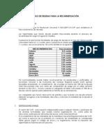 pago-de-deudas-para-recarnetizacion.pdf