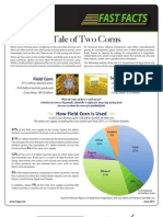 Tale of Two Corns-Corn Uses 6.2013