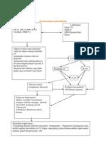 Patogenesis SLE