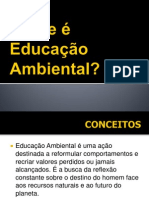 Aula 4 EducaoAmbiental