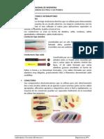 CondutoresYconectores.pdf
