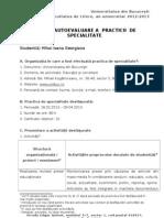 Fisa de Autoevaluare a Practicii de Specialitate - 2012-2013 - An 1, Sem 1