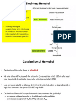Metabolism Hem