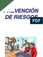 Presentacion p Riesgos1