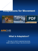 11-14yrs - Adaptations for Movement - Classroom Presentation education