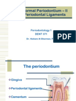 The Normal Periodontium PDL