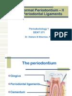 The Normal Periodontium PDL