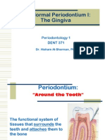 The Normal Periodontium 1-Gingiva