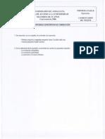 m25_2006_comentario_texto.pdf