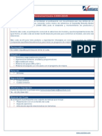 ACO for Fundamentos CMMI DEV 06