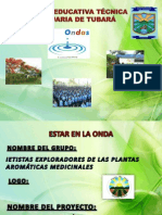 Proyecto Plantas Medicinales (Ondas)