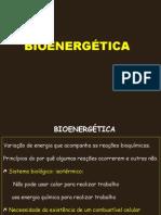Aula 1 - Bioenergética