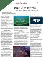 Poster Amazonia