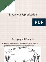Bryophyta Reproduction
