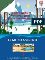 Diapositiva Del Medio Ambiente
