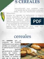 Bioquimica de Los Cereales