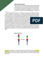Cromosomo Patias y Glosario