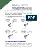Distocias+Del+Canal+Del+Parto