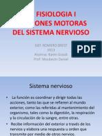 FUNCIONES MOTORAS DEL SN