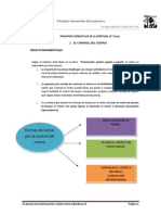 Tema 1 Principios Elementales de La Apertura_2 Parte (Sinopsis)