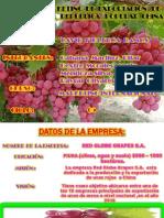 Uvas Rojas Viernes