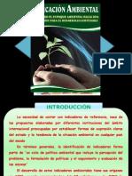 INDICADORES- EXPO!.pptx