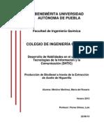 Producción de Biodiesel a través de la Extracción de Aceite de Higuerilla