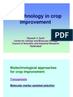 Biotechnology in Crop Improvement by Ramesh Sonti