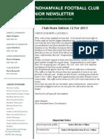 2013 Newsletters Week12