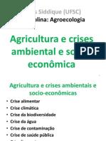 01 Siddique2012-2 CrisesAgricAtual Slides