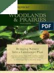 Bringing Nature Into a Landscape Plan