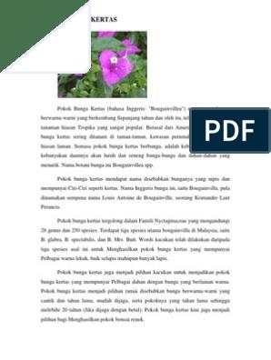 Kajian Bunga Kertas