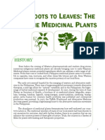 Local Philippine Medicinal plants