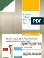 REGIÓN TIBIAL POSTERIOR2