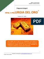 Programa Integral Metalurgia Del Oro - Virtual Jul 2013